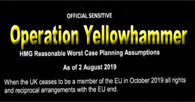 Operation Yellowhammer Reasonable Worst Case Senario